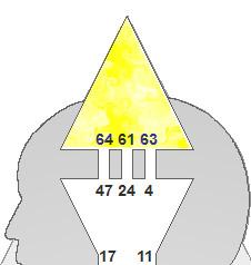 Körpergrafik Kopf Auschnitt neu color
